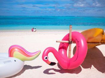 Llegaron las vacaciones: para niños en edad escolar – primaria